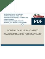 apresentação_lamartine