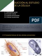 I. Introducción al estudio de la célula