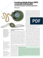 6.Teoría endosimbiótica