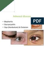 Adnexal diseases, corneal abrasion, fb