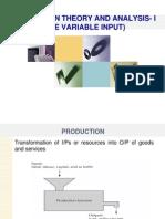 Production Theory & Analysis i