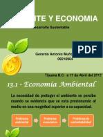 Ambiente y Economia