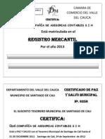 Ejemplo- Formatos Para Legalizar La Empresa ,Minuta o Escritura de Constitucion (1)