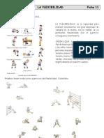 Fichas educacion fisica  2º eso flexibilidad