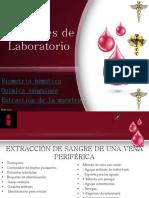 Exámenes de Laboratorio(BH, qumica sang.)