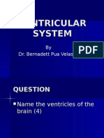 Ventricular System Lecture