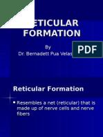 Reticular Lec
