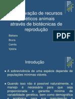 Conservação de recursos genéticos animais através de biotécnicas de reprodução