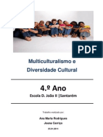 Multiculturalismo e Diversidade