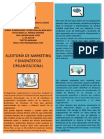 Articulo Profesional Auditoria de Marketing