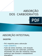 Absorção - Carboidratos