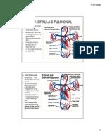 3.Sirkulasi Pulmonal