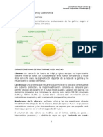 Clase 2 Guia Huevo-pescados-mariscos (1)