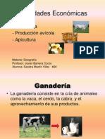 Actividades económicas, Geografía.