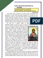 118. Icoana Facatoare de Minuni Din Derjavino