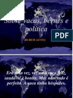 Sobre Vacas, Bernes e Politica