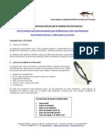 MEI 608 - Higiene y Sanitización (Planta de Harina de Pescados)
