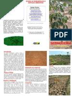 Folder Seringueiras