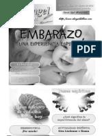 El Embarazo - ELANGELDELBIEN-ENERO2012
