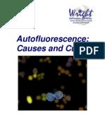 Auto Fluorescence