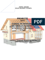 Proiecte_ Examen Competente Profesionale_ i