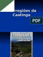 5 Ecorregiões da Caatinga