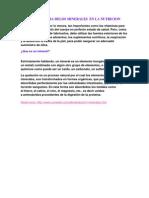 Importancia Delos Minerales en La Nutricion