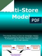 Multi Store Model