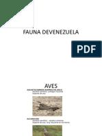 Fauna Devenezuela