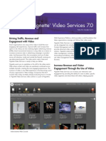 Vignette Video Services Datasheet