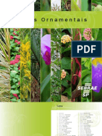Catalogo Plantas Ornamentais