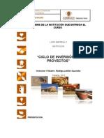 Manual Proyectos de Inversion