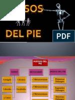 Huesos y Articulaciones Del Pie