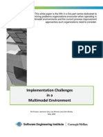 Implementation Challenges in a Multimodel Environment