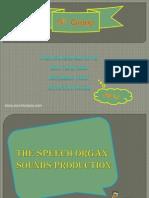 The Organs Speech Sounds Production