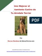 Como Mejorar El Comportamiento Canino de Tu Airedale Terrier