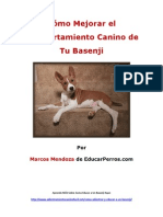 Como Mejorar El Comportamiento Canino de Tu Basenji