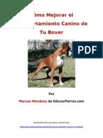 Como Mejorar El Comportamiento Canino de Tu Boxer