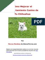 Como Mejorar El Comportamiento Canino de Tu Chihuahua