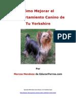 Cómo Mejorar el Comportamiento Canino de tu Yorkshire