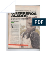 Harpía en Argentina. Guerreros Alados