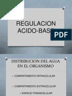 Regulación ácido-base