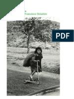 """Catálogo """"Más que niños"""", fotografías de Paco Ontañón"""