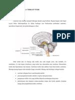 Anatomi Kepala Dan Leher Yang Terkait Nyeri