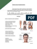 Medicina Legal Traumatologica