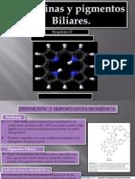 Bioquimica - Porfirinas y Pigmentos Biliares2