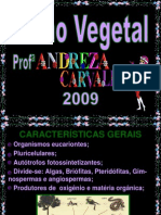 Reino Vegetal- Carlos Barros