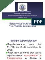 Capacitação Estágio 2010_2