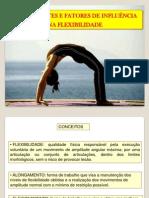 Flexibilidade treinamento