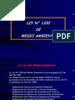 Ley 1333 + RGGA